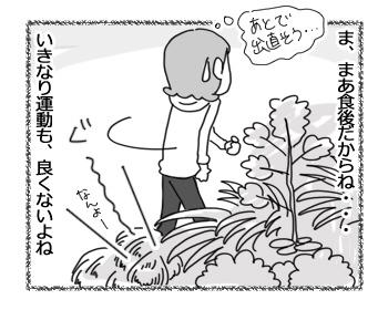30032017_cat3.jpg
