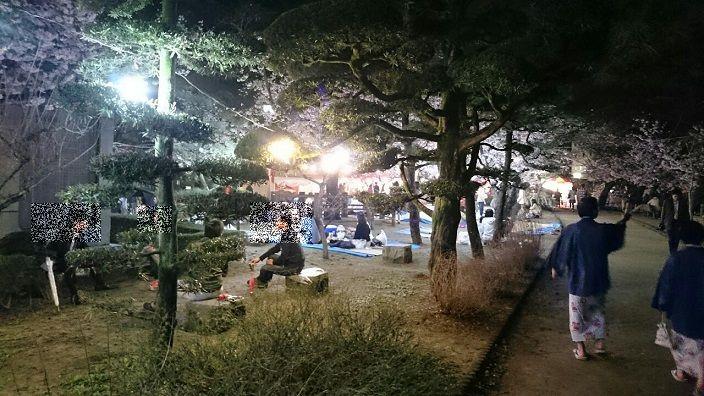 20170408道後公園夜桜①