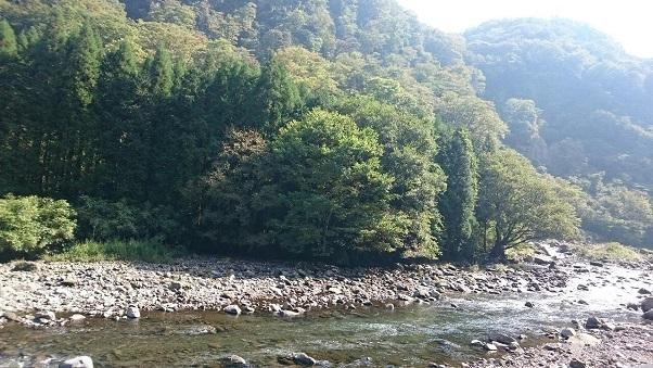 201810九重つり橋 (2)