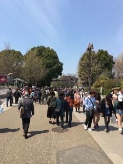 2017上野動物園_003_1