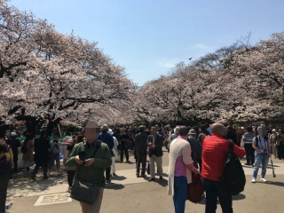 2017上野動物園_005_1