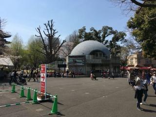 2017上野動物園_008_1