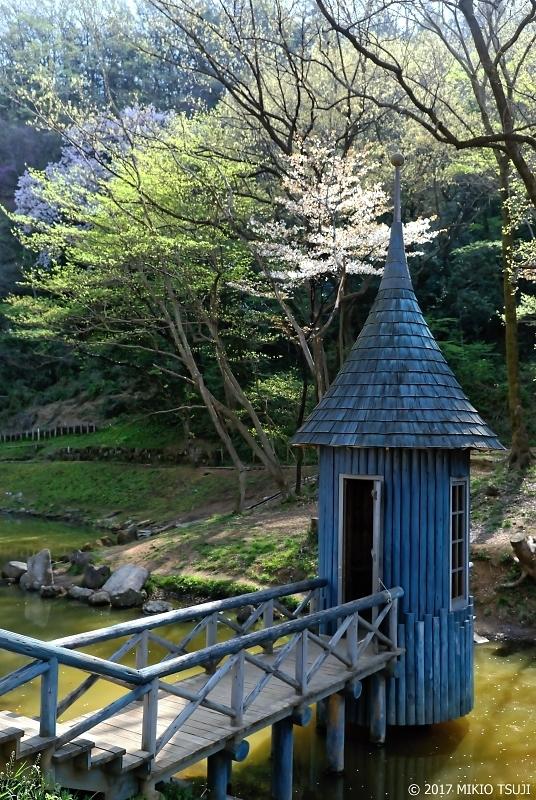 絶景探しの旅 - 0195 ムーミン谷の桜 (あけぼの子どもの森公園/埼玉県 飯能市)