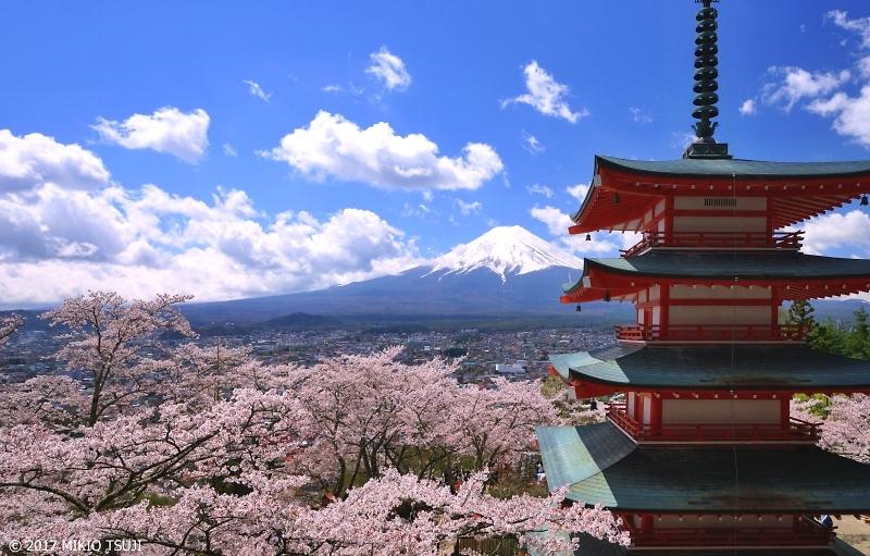 絶景探しの旅 - 0198 絶景!満開の桜・富士山・五重塔が美しい新倉山浅間公園 (山梨県 富士吉田市)